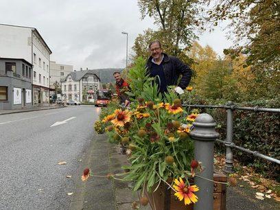Blumenkästen mit Stauden